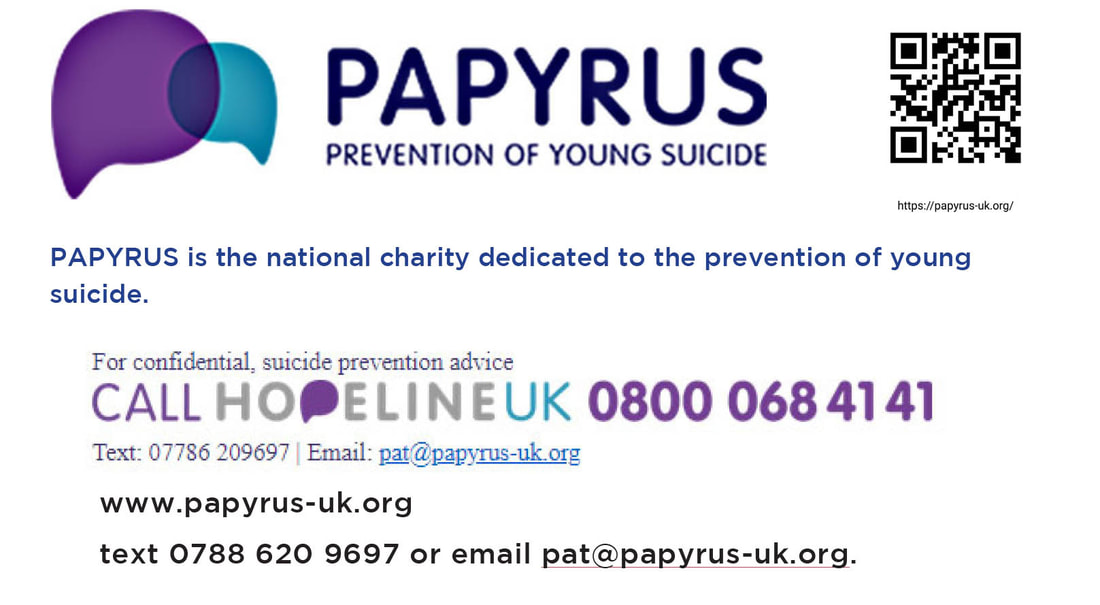 Banner linking to Papyrus, a charity concerned with suicide in young people